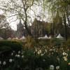 Ippenburger Frühlingsfestival 5