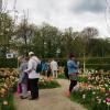 Ippenburger Frühlingsfestival 2