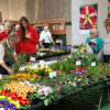 Veranstaltung: Garten Salzburg