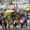 Veranstaltung: Gartenfestival Freiburg