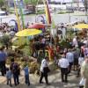 Gartenfestival Freiburg 2