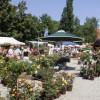 Gartenfestival Freiburg 3