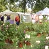 Gartenfestival Freiburg 5