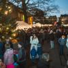 Weihnachtsmarkt Späth´sche Baumschulen