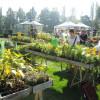 Bregenzer Gartenkultur 5