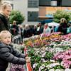 Kulturraum Garten - Neuwieder Gartenmarkt 4