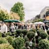 Kulturraum Garten - Neuwieder Gartenmarkt 3