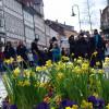 Veranstaltung: Northeimer Frühlingserwachen – Haus & Gartentrends