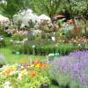 Gartenfestival LebensLust Hardegsen 2