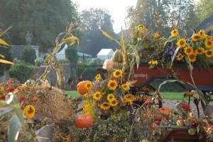 Die herbstliche Gartenveranstaltung