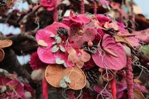 Wunderschön: Die Orchidee