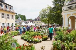 Das Gartenfest Hanau Titel