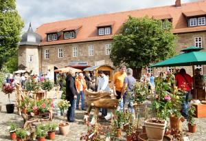 Gartenveranstaltung am Wochenende: Friedewalder Gartenfest