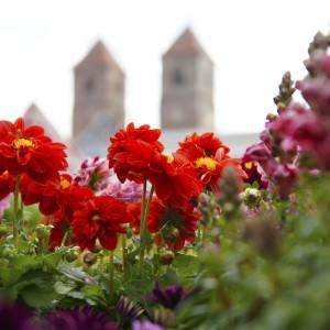 Gartenfest_Kloster Vessra_21