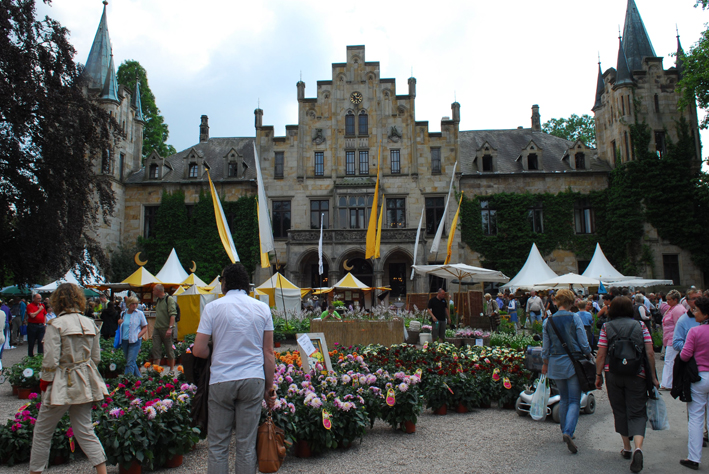 Sommerfestival Ippenburg1
