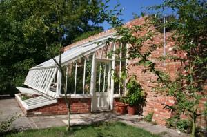 Alitex Greenhouse 4