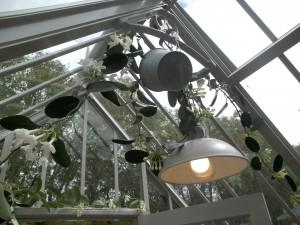 Nicht nur die richtige Herbstbepflanzung, auch schöne Lichtquellen machen das Gewächshaus gemütlich...