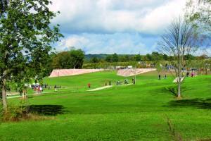 LGS Bayreuth: Ein Blick in`s Grüne