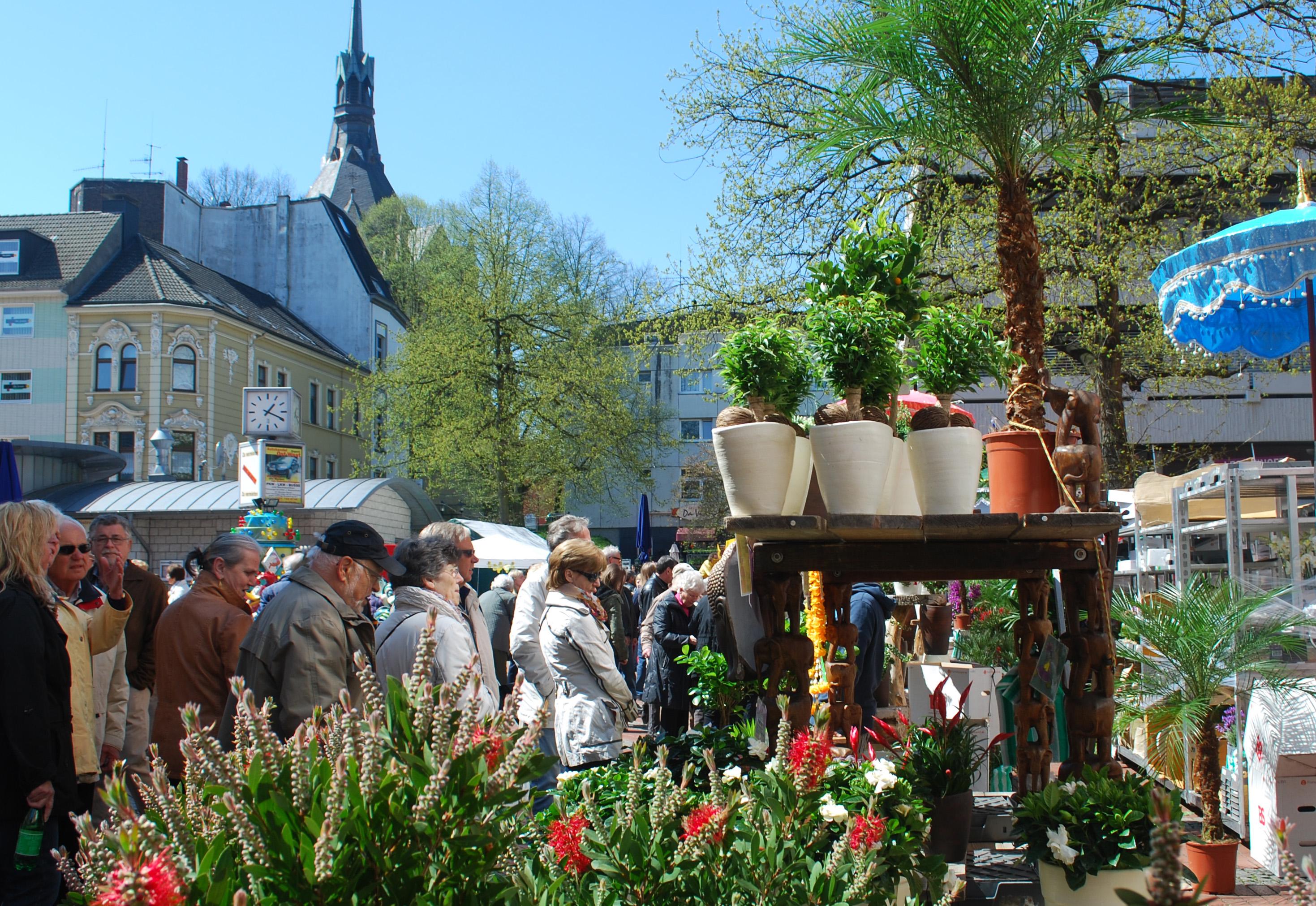 Blumen Und Pflanzenmarkt Essen Steele 2016 Gartenmessen