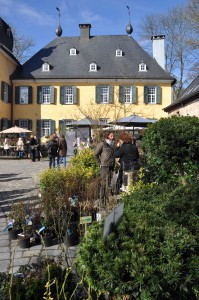 Stilblüte Schloss Lüntenbeck