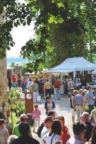 Gartenveranstaltung: Rosenmesse Königsberg i. Bayern