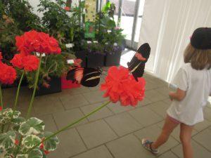 Auch kleine Besucher haben Spaß an der Gartenschau Pfaffenhofen