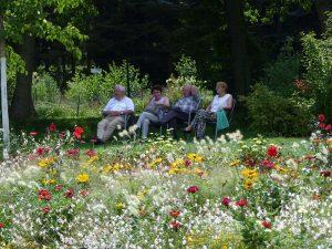 Entspannen bei der Landesgartenschau Bad Schwalbach