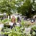 Gartenzauber Waldkirchen 5