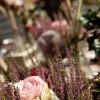 Frühjahrsmesse Garten & Ambiente Bodensee IBO 3