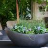 Garten- und Pflanzentage zum Suhler Frühling  2