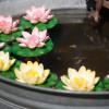 Regio Messe mit Gartenwelt 7