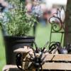 Regio Messe mit Gartenwelt 8