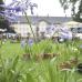 Das Gartenfest Corvey 3