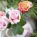 13. Blumen- und Pflanzenbörse 3