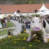 DiGa - Die Gartenmesse Bad Schussenried 1