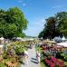 Das Gartenfest Corvey 2017 5