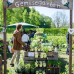 Das Gartenfest Dalheim 5