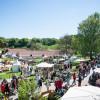 Das Gartenfest Dalheim 3