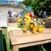 Das Gartenfest Kassel 4