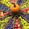 Herbstfestival Herrenhausen 4