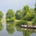 Gartenfestival Park & Schloss Branitz 7