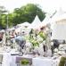 Gartenfestival Park & Schloss Branitz 4