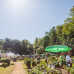 Gartenfestival Park & Schloss Branitz 1