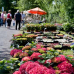 Mecklenburger Gartentage 3