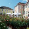 Schlossparkträume auf Schloss Assumstadt 3