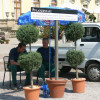 Barocke Gartentage Ludwigsburg 4