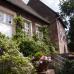 Rosen, Garten & Ambiente-Markt 1