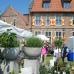 Rosen, Garten & Ambiente-Markt 6