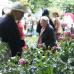 Frühlings- und Pflanzenmarkt 3