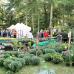 Herbst- & Gartentage Schloss Scherneck 5